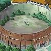 Арена для теренировок